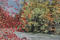 campbellriverincolour